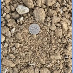 411 Limestone